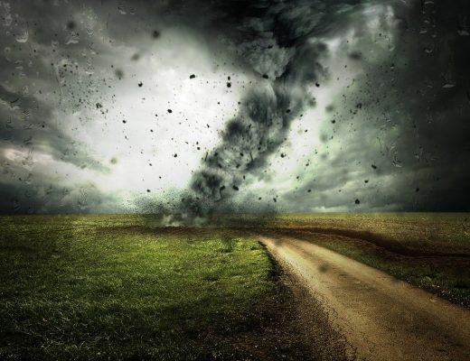 Neutralność klimatyczna – czym jest?